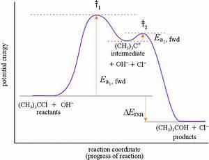 Reaction Mechanisms