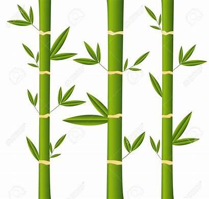 Bamboo Clipart Sticks Stalks Vector Clipground Stick