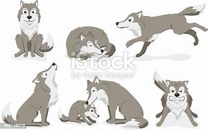 Wolf, Set, Standing, Sleeping, Running, Howling, Ungry, Stock