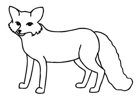 fox coloring pages fox coloring book arctic page artic for grig3 org