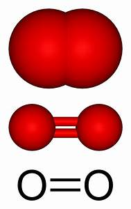 Which Of The Following Molecules Contains A Double Bond