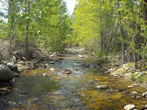 Shingle Creek (British Columbia) - Wikipedia