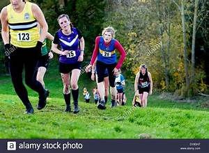 Women running uphill in a cross-country race Stock Photo ...