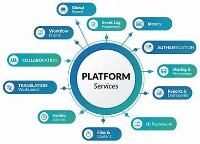 Services Salesforce Platform Enterprise Customized Crm Force