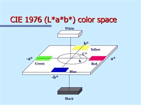 Teoría Del Color. Formas