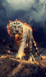 White Tiger Hd Wallpaper For Mobile - Vote Wallpaper