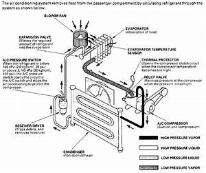 2000 Honda Civic Lx Wiring Diagram Diagram Base Website