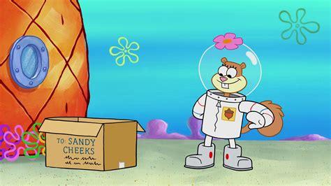 spongebuddy mania spongebob episode sportz