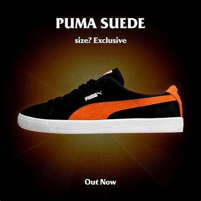 Puma Esclusiva Anniversario Suede Sizeofficial Partire Consegna