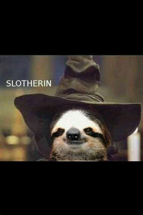 slytherin sloth lol geek harry potter puns harry