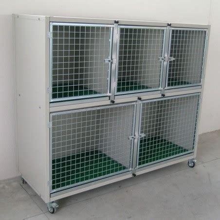 gabbie gatti gabbie degenza box esposizione per cani e gatti ferranti