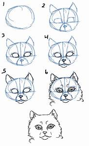 Savanna Williams: How to Draw Cats- Faces / Heads