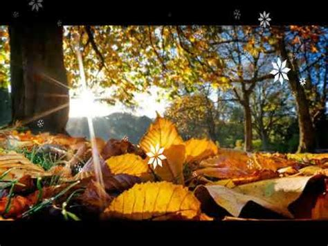 Free Animated Autumn Wallpaper - autumn wallpapers autumn wallpapers hd animation desktop