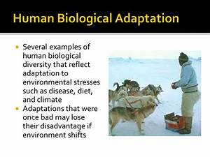 Human Variation and Adaptation - ppt video online download