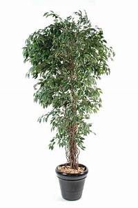 Arbuste D Intérieur : arbre artificiel ficus lianes petites feuilles plante d ~ Premium-room.com Idées de Décoration