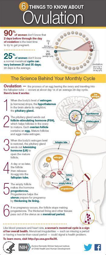 17 Best Ideas About Ovulation Symptoms On Pinterest. Society For Human Resource Management Certification. How To Brand Your Business Name. Phd Programs In Special Education. Acrylic Brochure Holders Wall Mounted. Cross Town Movers Boise Website Developer Job. Locksmith Beverly Hills Ca Master In Banking. Workers Comp Insurance Providers. Career Options For Criminal Justice Majors