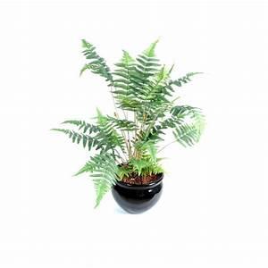 Mini Plante Artificielle : fougere des bois plante artificielle fleurs plantes artificielles ~ Teatrodelosmanantiales.com Idées de Décoration