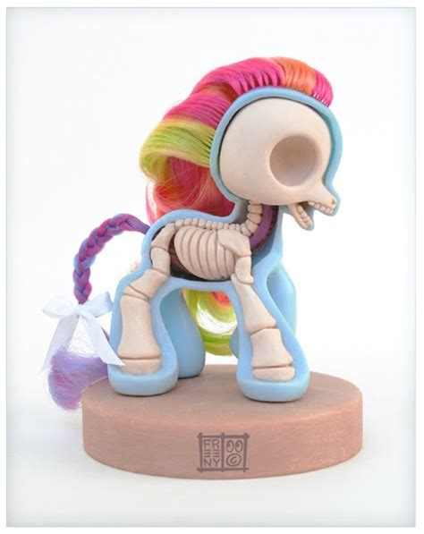 pony anatomical sculpt mlp anatomy jason freeny toys vinyl skeleton sculpture toy inside poney figure petit its wow section cross