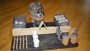 Coole Sachen Zum Selber Bauen : die 25 besten ideen zu katzenspielzeug selber machen auf pinterest katzenspielzeug kratzbaum ~ Markanthonyermac.com Haus und Dekorationen