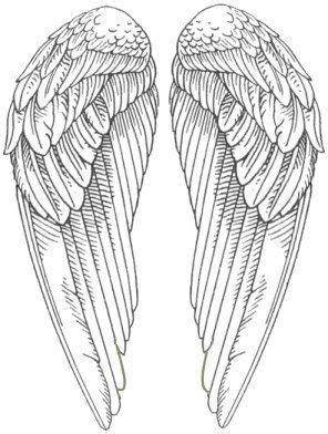 Angel Wings Pictures- Snitch wings A WHOLE BOARD OF