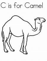 Camel Coloring Pages Line Drawing Preschool Craft Printable Animal Kindergarten Cartoon Animals Desert Crafts Students Printables Wild Simple Funny Pre sketch template
