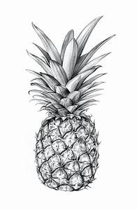 Sibling & Co. Illustrated pineapple. http://society6.com ...
