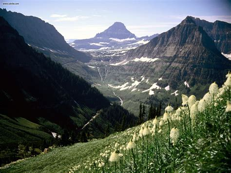 nature mount reynolds glacier national park montana picture nr