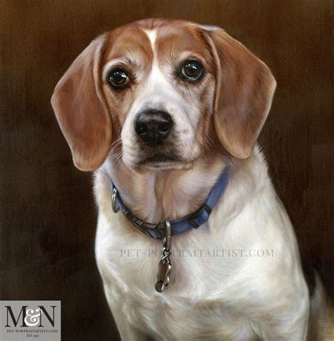 Dog Portraits Beagle Oil Pet Portrait Melanie