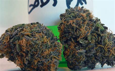 gods gift marijuana strain review