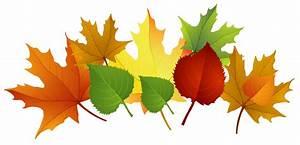 Fall leaves fall clip art autumn clip art leaves clip art ...