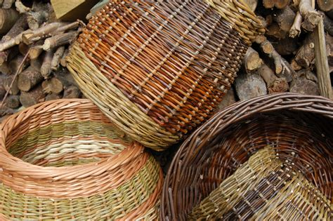 basketry  willow weaving halsway manor