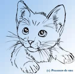cat sketch cat sketch by pouasson de oro on deviantart