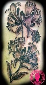 Honeysuckle Tattoo on Pinterest | Tattoos and body art ...