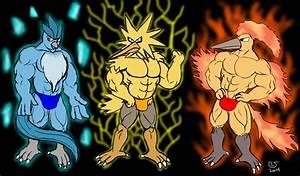 Pokemon: Three Legendary Bird by CaseyLJones on DeviantArt