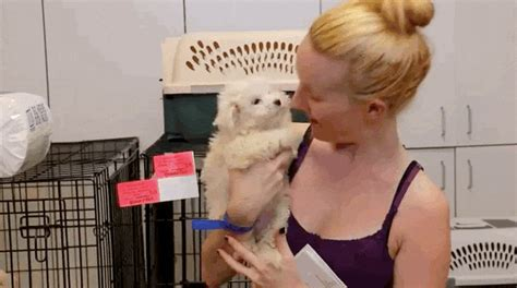 cops rescue  baby puppies   monster  year