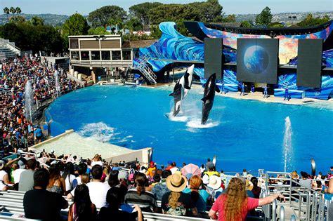 Seaworld Agrees End Captive Breeding Killer Whales