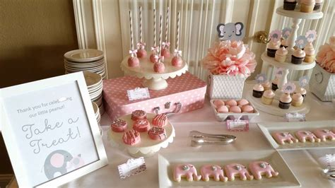 pink  gray elephant baby shower party ideas photo