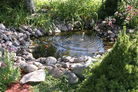small garden with pond 37 backyard pond ideas designs pictures