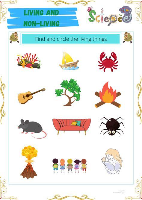 grade  science activity sheets living   living