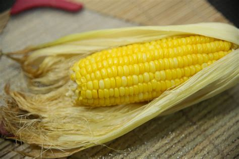 microwave corn how to microwave corn in its husk 6 steps with pictures
