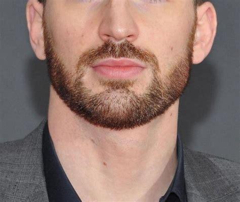 top beard trimmers beard