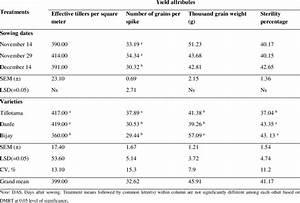 Yield, Attributes, Effective, Tillers, Per, Square, Meter, Number, Of, Grains
