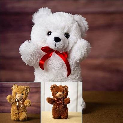 Teddy Bear Wholesale Bears Plush Rush Bunch