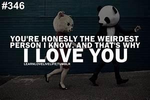 Weird Couple Quotes. QuotesGram