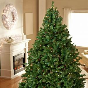 Classic, Pine, Full, Pre-lit, Christmas, Tree