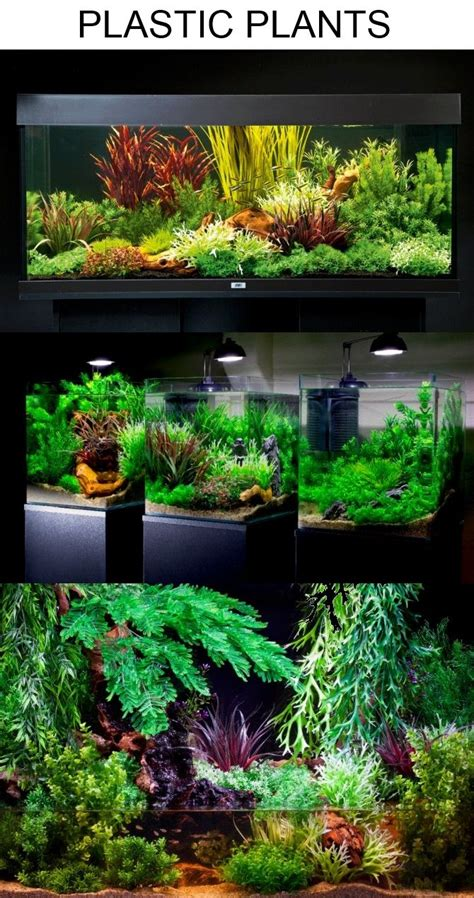 Planted Aquarium Aquascaping by Aquascaping With Plastic Plants Only Aquascaping