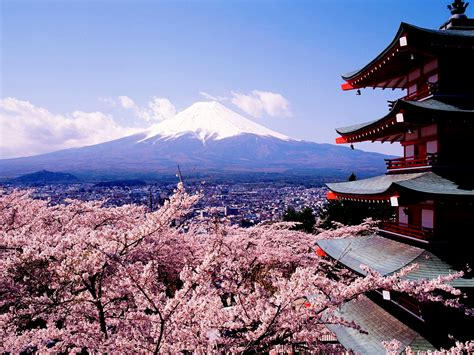 cherry blossoms sakura hd wallpapers hd wallpapers