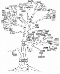Family Tree Compilation  Organization  Charting