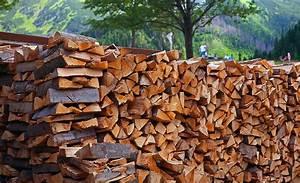 Poele à Bois Qualité : po le bois comment choisir un bois de qualit ~ Premium-room.com Idées de Décoration