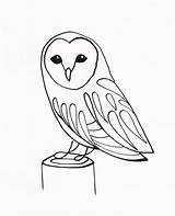 Owl Drawing Simple Line Drawings Owls Barn Tattoo Easy Draw Sketch Cute Step Animals Coloring Tattoos Ink Pen Pages Dip sketch template